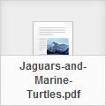 jaguars and turtles